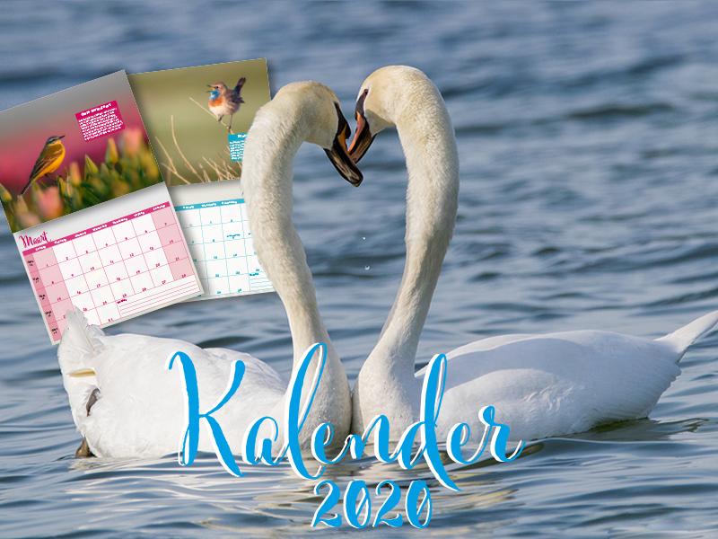 Kalender-ontwerp